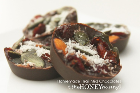 theHONEYhunny Blog - Homemade [Trail Mix] Chocolates