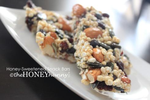 theHONEYhunny Blog - Honey-Sweetened Snack Bars